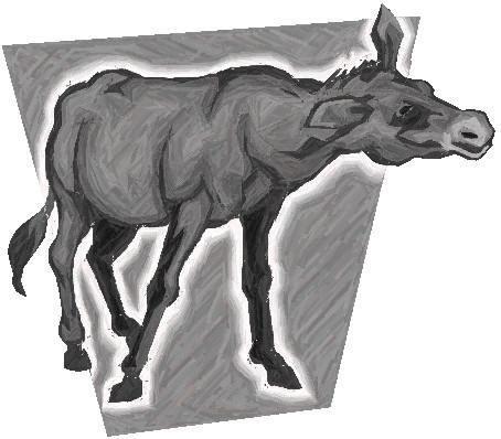 LA MULA en dibujo - Imagui